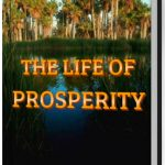 THE LIFE OF PROSPERITY www.ireneoviojie.com